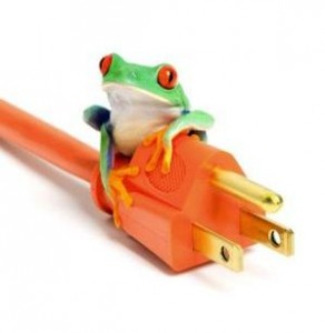 frog_powercord_46702192_smallcrop