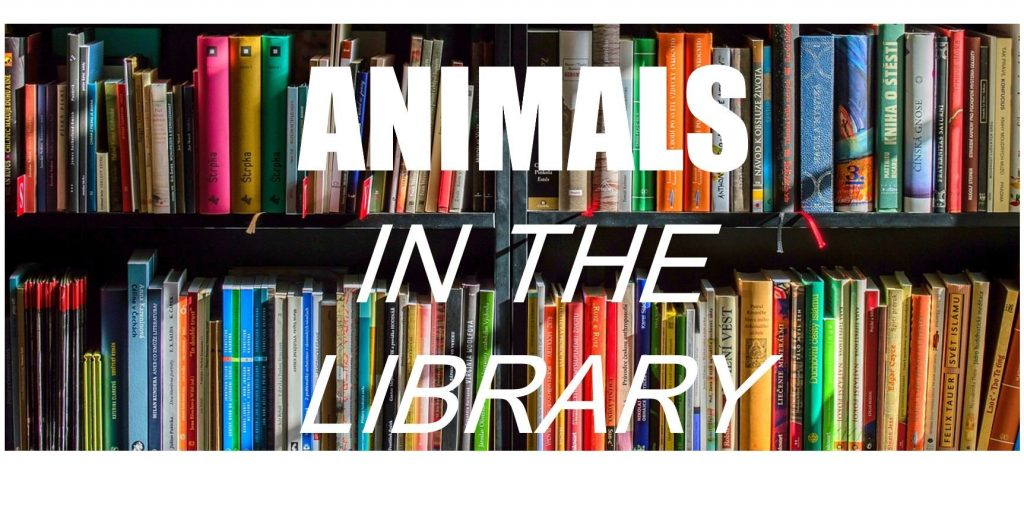 Animals in the library