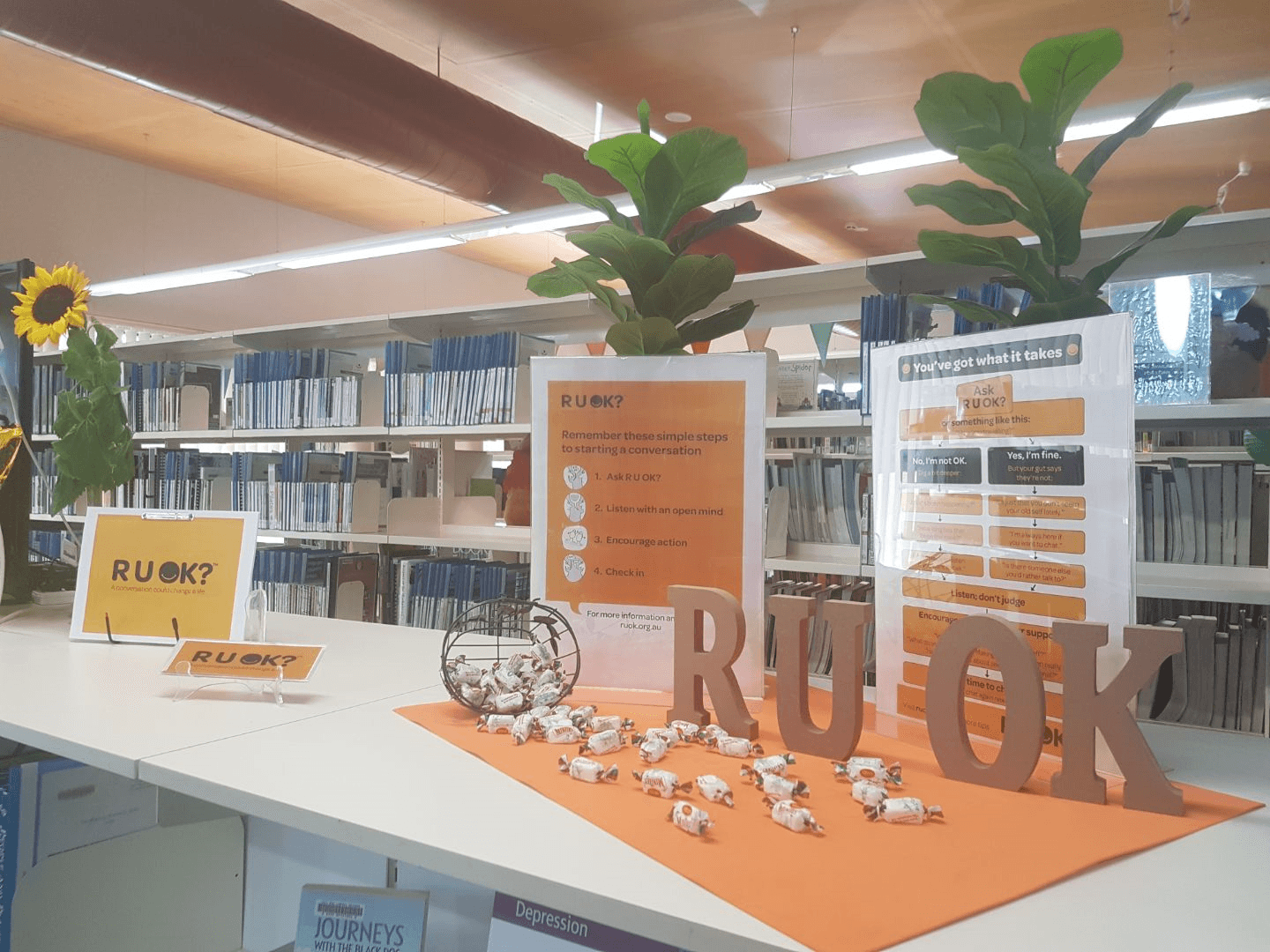 RUOK? at Cessnock Library